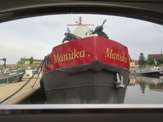 Shiny Manuka