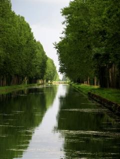 Still canal evening