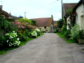 Flowers in Marigny