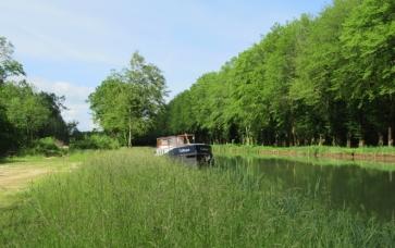 Near Saint-Seine-sur-Vingeanne