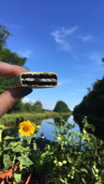 roanne__after__oreo