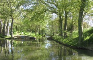 The feeder canal