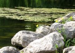 lac bleu 2