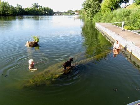 Sapiac swimming