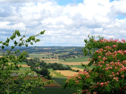 Lauzerte view