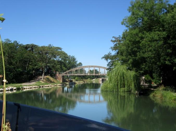 Montech canal, willow