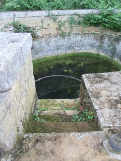 Bayard watering hole