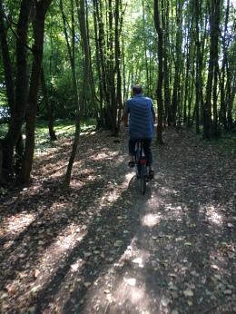 Stu in the woods