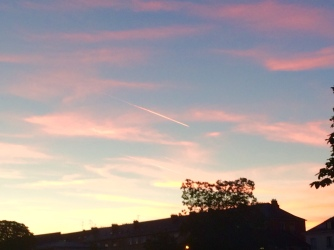 pink air streams in a rose sky